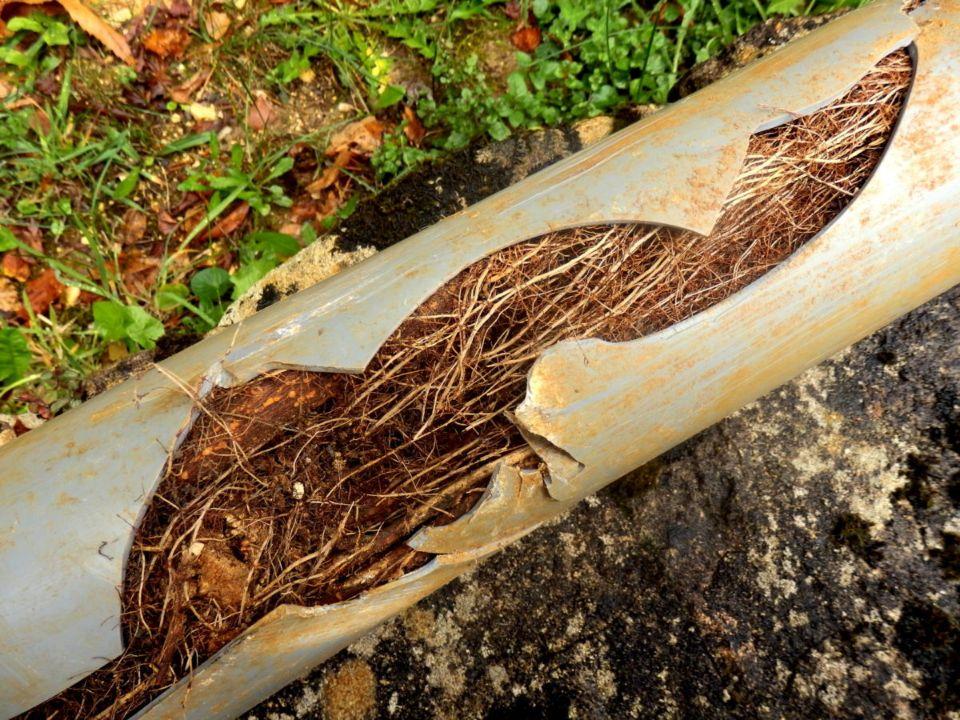 Relentless plumbing solutions, burleson, tx and surrounding areas, sewer line repair